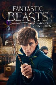 Fantastic Beasts and Where to Find Them (2016) Full Movie [Hindi-Eng] 1080p 720p Torrent Download