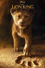 The Lion King 2019 Dual Audio [Hindi-Eng] 1080p 720p Torrent Download