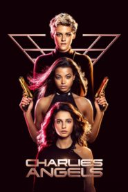 Charlie's Angels 2019 Dual Audio[Hindi-Eng] 1080p 720p Torrent Download