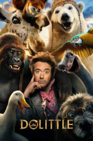 Dolittle (2020) [Hindi-Eng] Movie 1080p 720p Torrent Download