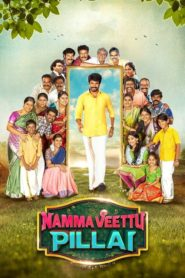 Namma Veettu Pillai (2019) Hindi Dubbed 1080p 720p Torrent Download