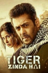 Tiger Zinda Hai (2018) Full Movie 1080p 720p Torrent Download