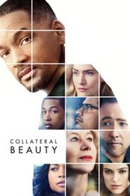 Collateral Beauty (2016) Full Movie [Hindi-Eng] 1080p 720p Torrent Download