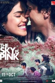 The Sky Is Pink (2019) Full Movie 1080p 720p Torrent Download