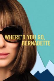 Where'd You Go, Bernadette (2019) Full Movie [Hindi-Eng] 1080p 720p Torrent Download