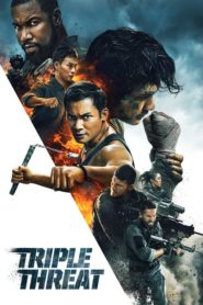 Triple Threat (2019) Dual Audio [Hindi-Eng] 1080p 720p Torrent Download