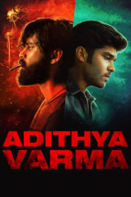 Adithya Varma 2019 Dual Audio[Hindi-Eng] 1080p 720p Torrent Download
