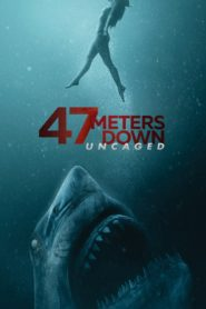 47 Meters Down: Uncaged 2019 Dual Audio [Hindi-Eng] 1080p 720p Torrent Download