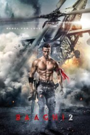 Baaghi 2 (2018) Full Movie 1080p 720p Torrent Download
