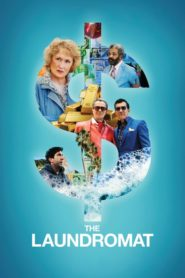 The Laundromat (2019) Dual Audio [Hindi-Eng] 1080p 720p Torrent Download