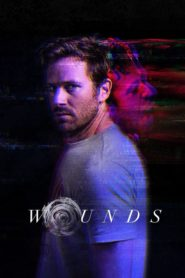 Wounds (2019) Dual Audio [Hindi-Eng] 1080p 720p Torrent Download