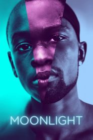 Moonlight (2016) Full Movie [Hindi-Eng] 1080p 720p Torrent Download