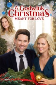 A Godwink Christmas: Meant For Love 2019 Dual Audio[Hindi-Eng] 1080p 720p Torrent Download