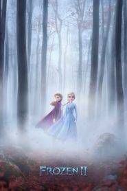 Frozen II 2019 Dual Audio[Hindi-Eng] 1080p 720p Torrent Download