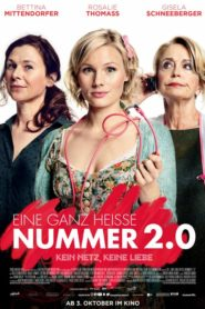 Eine ganz heiße Nummer 2.0 Dual Audio [Hindi-Eng] 1080p 720p Torrent Download