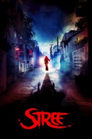 Stree (2018) Full Movie 1080p 720p Torrent Download