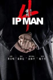 Ip Man 4: The Finale 2019 [Hindi-English] 1080p 720p Torrent Download
