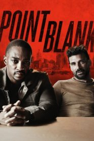 Point Blank 2019 Dual Audio [Hindi-Eng] 1080p 720p Download