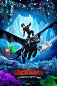 How to Train Your Dragon: The Hidden World 2019 Dual Audio [Hindi-Eng] 1080p 720p Torrent Download