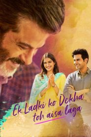 Ek Ladki Ko Dekha Toh Aisa Laga (2019) Full Movie 1080p 720p Torrent Download