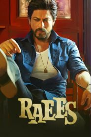 Raees 2017 Movie 1080p 720p Torrent Download