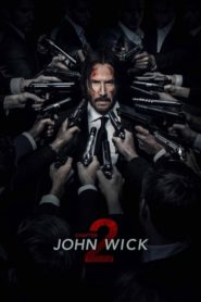 John Wick: Chapter 2 (2017) Full Movie [Hindi-Eng] 1080p 720p Torrent Download