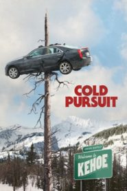 Cold Pursuit (2019) Full Movie [English-DD5.1] 720p BluRay Download