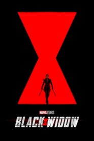 Black Widow 2020 [Hindi-English] 1080p 720p Torrent Download