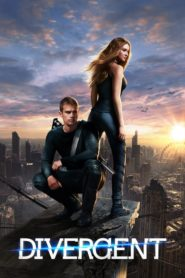 Divergent (2014) Dual Audio [Hindi-DD5.1] 720p BluRay Download
