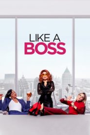 Like a Boss 2020 [Hindi-English] 1080p 720p Torrent Download