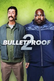 Bulletproof 2 2020 [Hindi-English] 1080p 720p Torrent Download