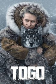 Togo 2019 [Hindi-English] 1080p 720p Torrent Download