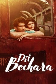 Dil Bechara (2020) Movie 1080p 720p Torrent Download
