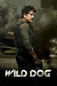 Wild Dog (2021) Movie Hindi 1080p 720p Torrent Download