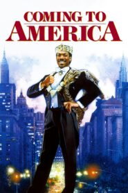 Coming to America (1988) Movie [Hindi-Eng] 1080p 720p Torrent Download