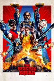 The Suicide Squad (2021) Movie Dual Audio [Hindi-Eng] 1080p 720p Torrent Download