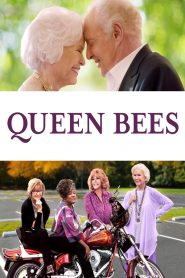 Queen Bees (2021) Movie Dual Audio [Hindi-Eng] 1080p 720p Torrent Download