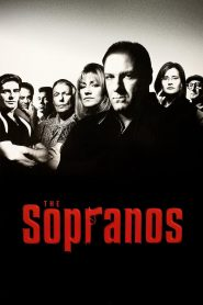 The Sopranos (1999) Web Series Hindi Dubbed 1080p 720p Torrent Download