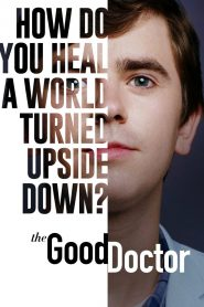 The Good Doctor (2017) Web Series Dual Audio [Hindi-Eng] 1080p 720p Torrent Download