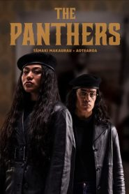 The Panthers (2021) Web Series 1080p 720p Torrent Download