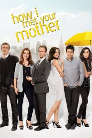 How I Met Your Mother (2005) Web Series Dual Audio [Hindi-Eng] 1080p 720p Torrent Download