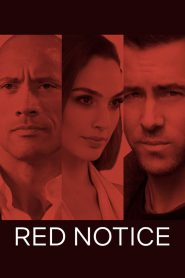 Red Notice (2021) Movie Dual Audio [Hindi-Eng] 1080p 720p Torrent Download