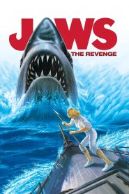 Jaws: The Revenge (1987) Movie Dual Audio [Hindi-Eng] 1080p 720p Torrent Download
