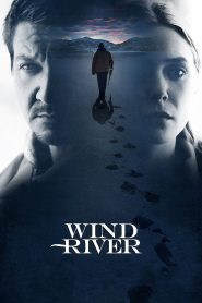 Wind River (2017) Movie Dual Audio [Hindi-Eng] 1080p 720p Torrent Download