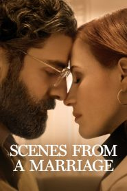 Scenes from a Marriage (2021) Web Series Dual Audio [Hindi-Eng] 1080p 720p Torrent Download
