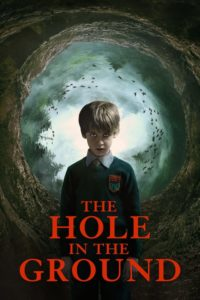 The Hole in the Ground (2019) Dual Audio [Hindi-Eng] 1080p 720p Torrent Download