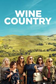 Wine Country (2019) Dual Audio [Hindi-DD5.1] 720p Download